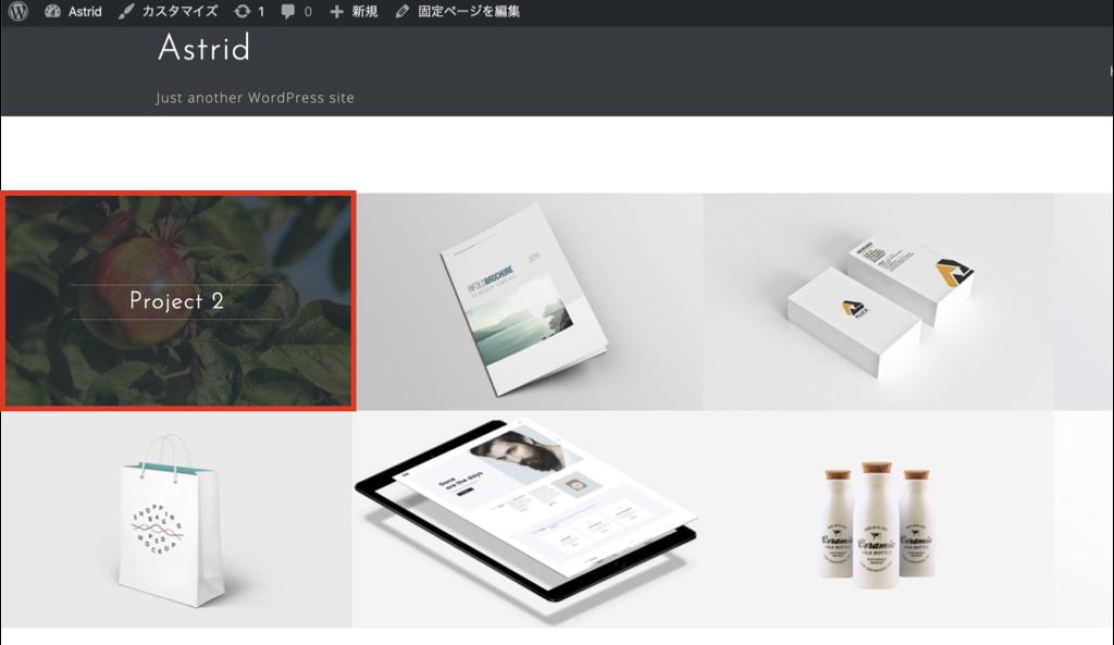 wordpress-astrid-customize3.004